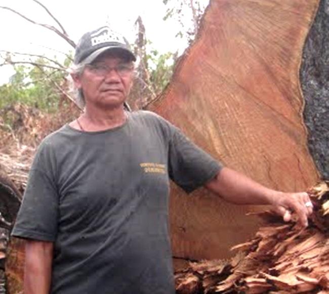 José C. Ribeiro ameaças amazônia madereiros