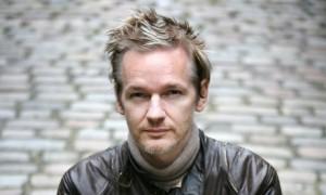 assange wikileaks pussy riot