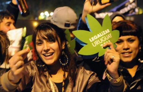 legalização maconha uruguai