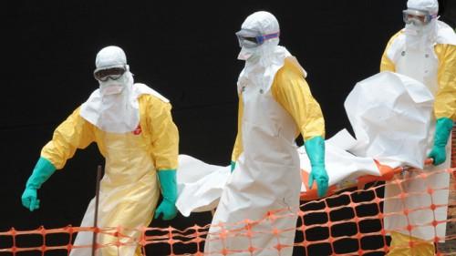 ebola vírus áfrica transmissão tratamento