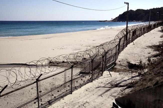 muro coreia do norte coreia do sul