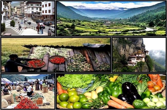 butão agricultura orgânica
