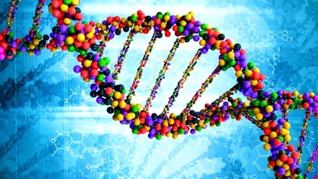 DNA israelenses mapeado saúde genética ciência