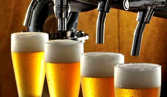 cerveja brasileira produção milho transgênicos