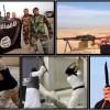 por-que-nos-fascinamos-com-as-cenas-de-violencia-do-estado-islamico
