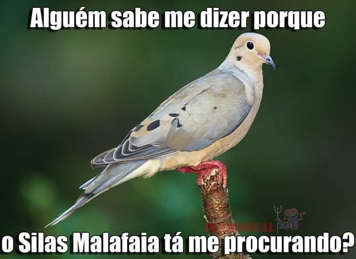 meme9