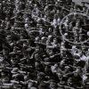 quando-conversei-nazista