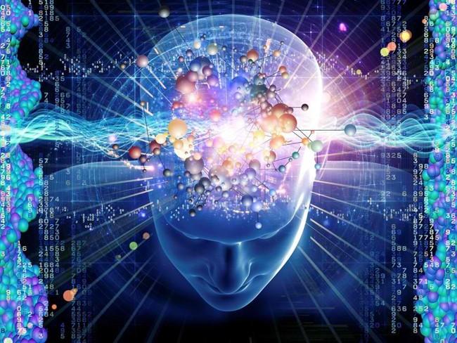 espertos inteligência qi cérebro