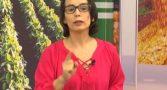 apresentadora-record-indios-malaria