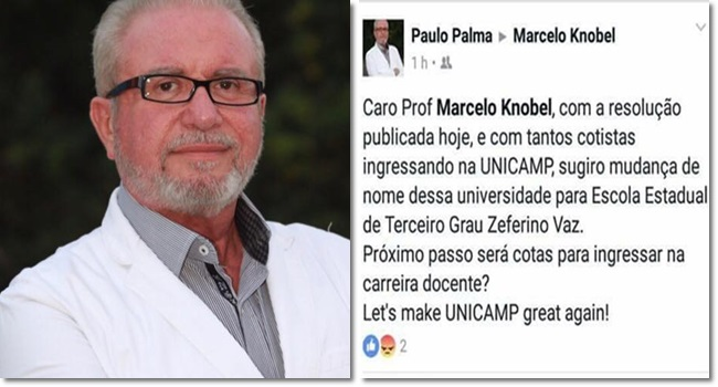 professor unicamp paulo palma cotas ataca racismo