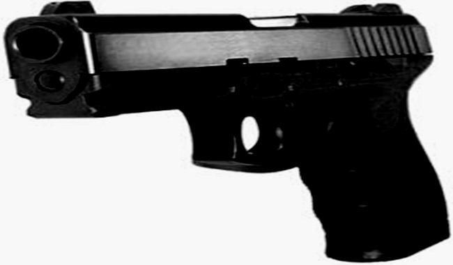 desarmamento arma de fogo mitos verdades