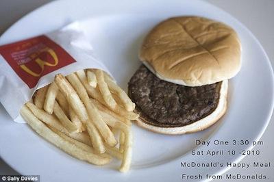 detestar o McDonald sanduíche podre decomposição