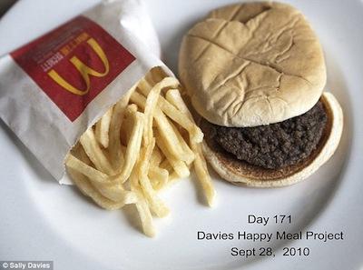 mcdonalds sanduíche decomposição
