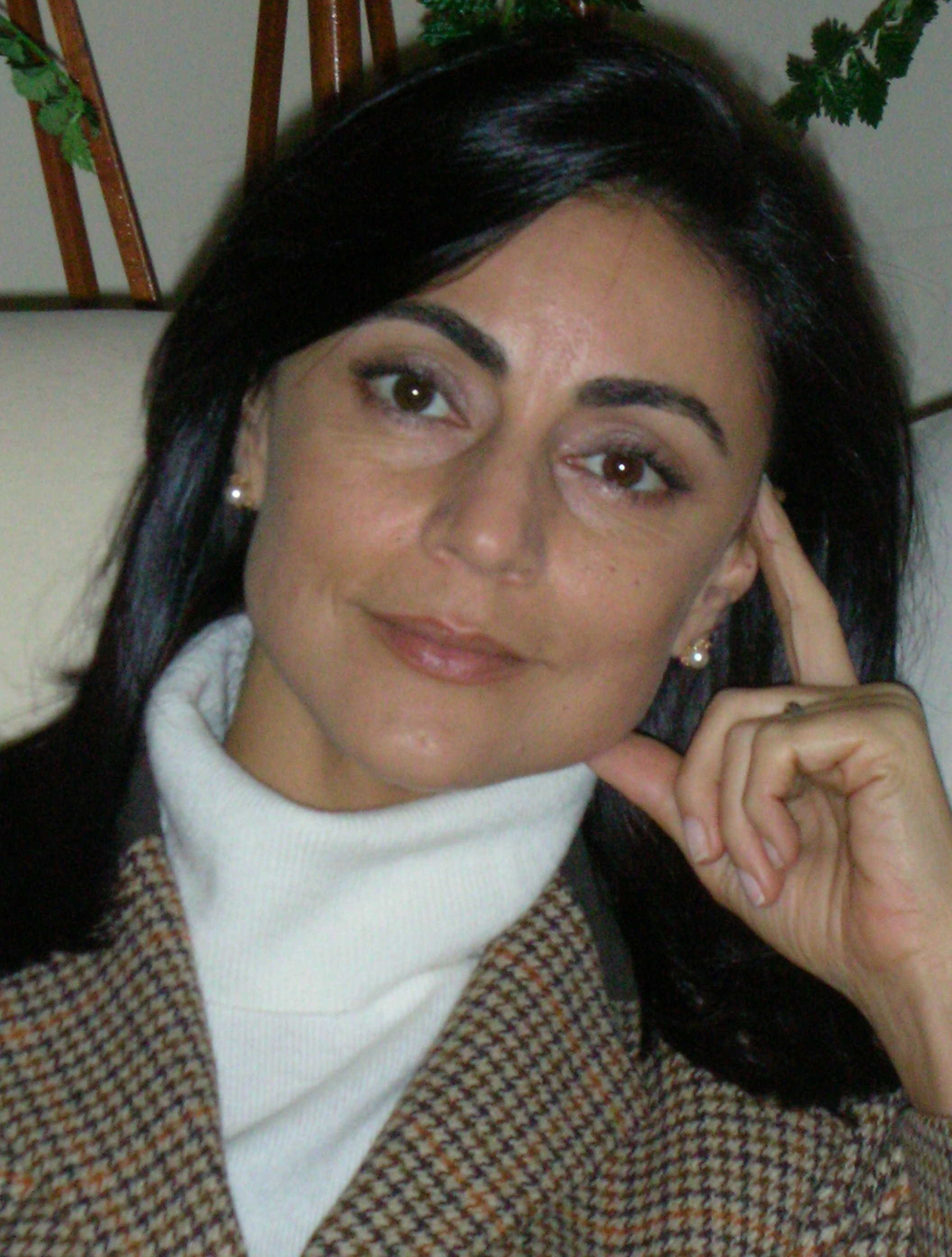 sibel edmonds boston bombas