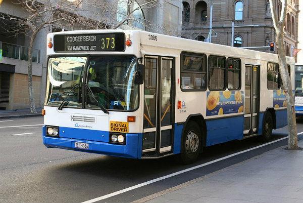 transporte público gratuito sidney