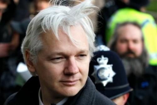 assange wikileaks austraália