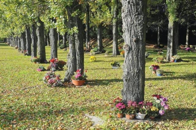 cemitérios frança laico