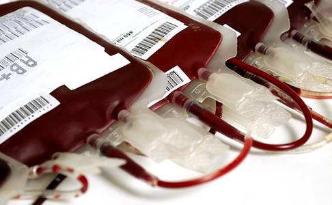 doação sangue estudante gay