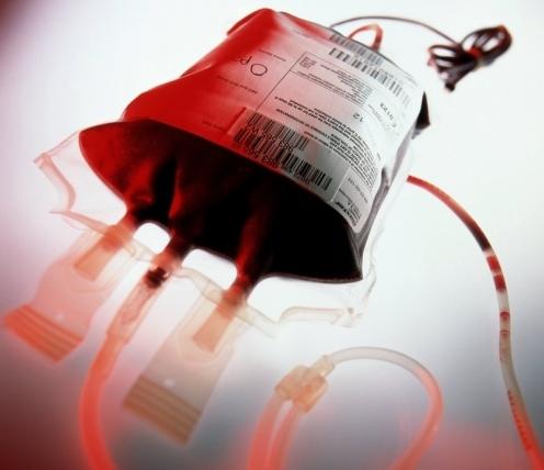 doar sangue preconceito