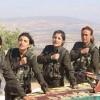 curdas1