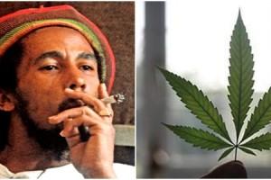 jamaica-legalizacao-maconha