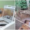 maquina-lavar-idosa-samarco