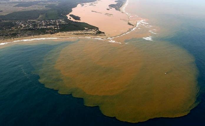 organizações ambientais estão em silêncio diante da Vale samarco meio ambiente barragem rio doce