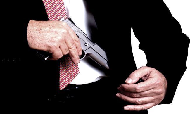 liberação arma desarmamento cidadão de bem