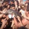 golfinho-argentina