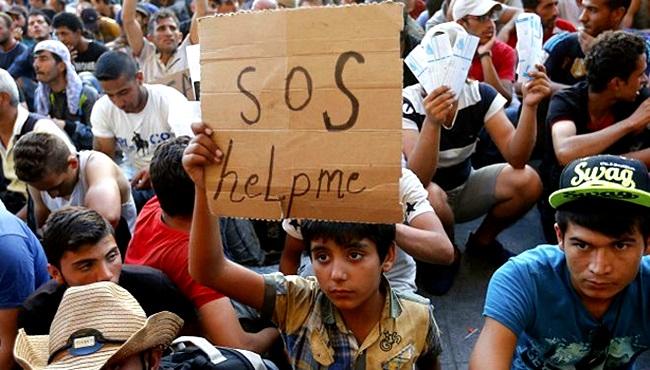 refugiados síria irã turquia brasil