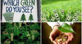 capitalismo-verde-deus-fracassado