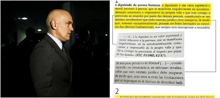Alexandre de Moraes plágio