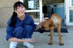veterinaria-se-matou-droga-usada-caes