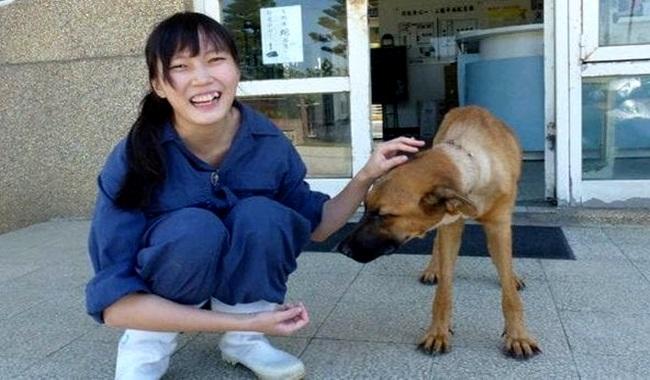 veterinária que se matou droga sacrifício de cães animais china