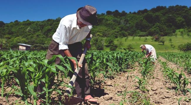 tragédia previdência prec 287 aposentadoria rural