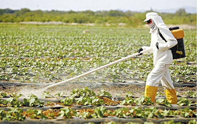 Agrotóxico michel temer nova lei