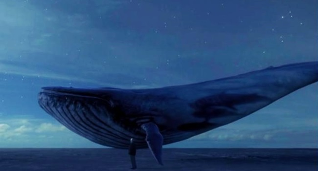 jogo baleia azul suicida preocupa brasil mundo