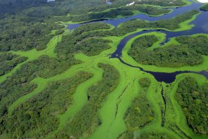parques-nacionais-brasil