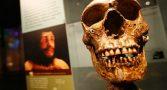 descoberta-homo-sapiens-revolucionar-evolucao-humana