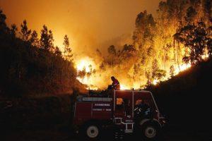 incendio-portugal-emocionou-mundo