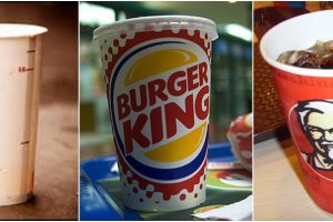 mcdonald-burger-king-coliformes-fecais