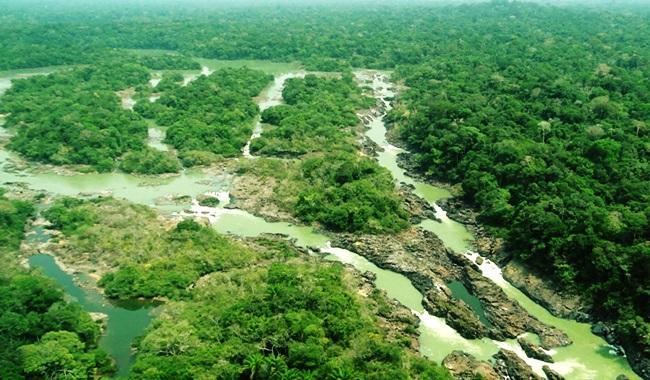 Floresta Nacional do Jamanxim michel temer acabar reduzir