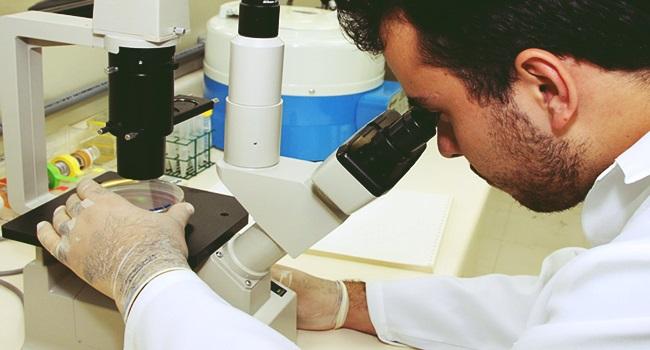 resistir aos ataques contra a ciência pesquisa educação brasil