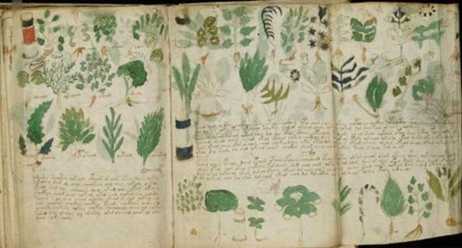 historiador decifra manuscritos misteriosos mundo