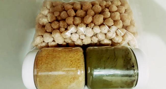empresa ração doria proposta adubo restos comida farinata