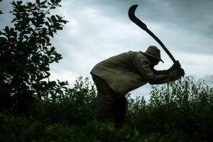 governo-divulgacao-da-lista-suja-do-trabalho-escravo