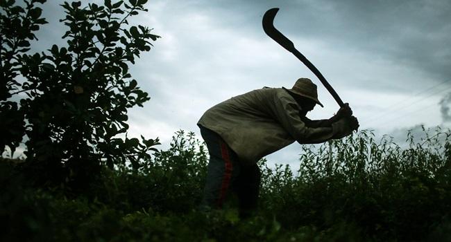 governo temer impede divulgação lista suja trabalho escravo