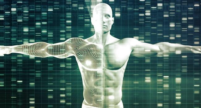 estudo vínculo genético orientação sexual masculina
