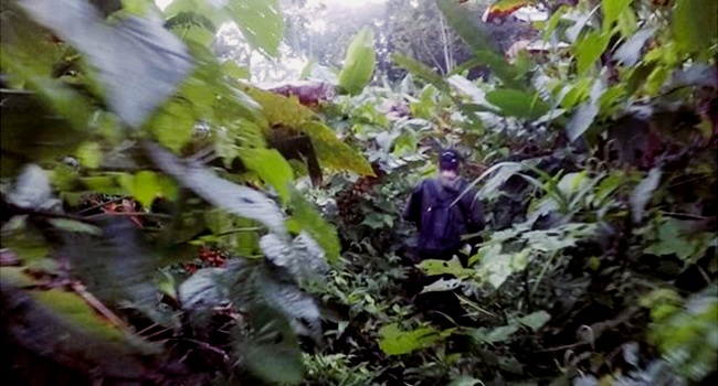 selva mais perigosa da América Latina Darien Panamá Colômbia
