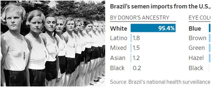 brasileiros importam sêmen brancos EUA